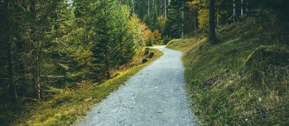 walking-trail-1031654_640